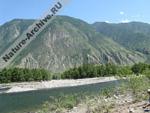 Долине Чулышмана, на той стороне Алтайский заповедник