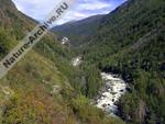 Река Чульча в Алтайском заповеднике